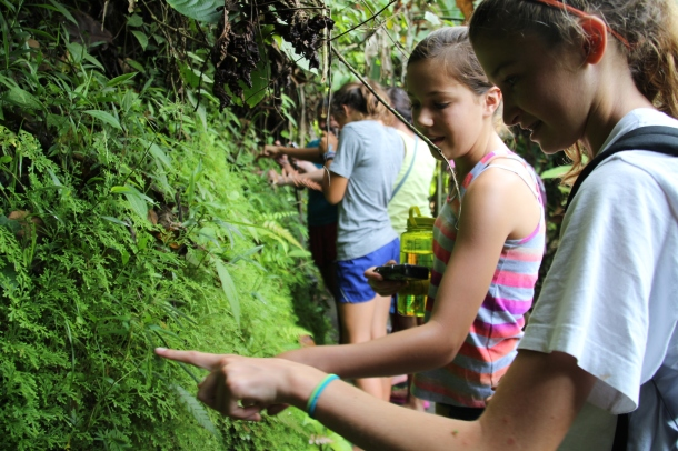 "The girls are amazed at the ""sensitive"" plants that retract at our touch during the 2-hour tour of the delights at Rancho Margot."